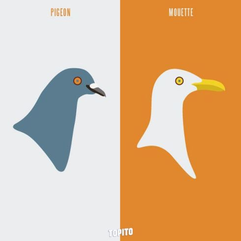 Paris-vs-Marseille-2