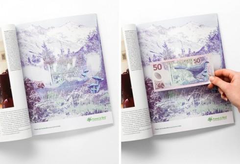 Forest-Bird-Dollar-Bills-Ads.jpeg2_-640x438