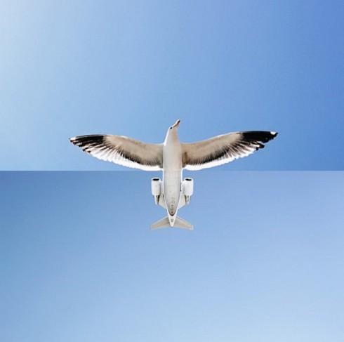 juxtapositionphoto4-640x636