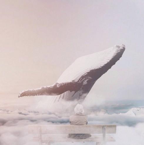 fantasymontage-11-900x901