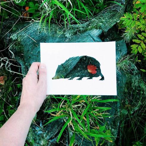 Nikolai-Tolsty-animal-silhouettes-12
