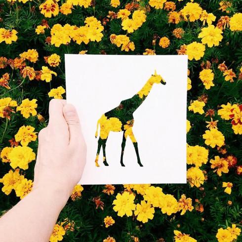 Nikolai-Tolsty-animal-silhouettes-14