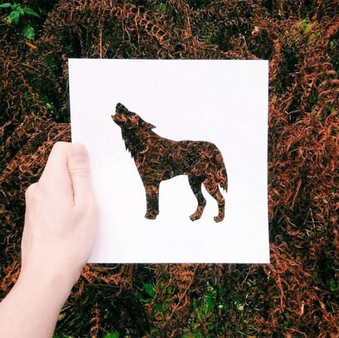 Nikolai-Tolsty-animal-silhouettes-18