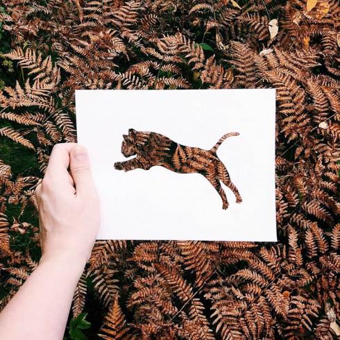 Nikolai-Tolsty-animal-silhouettes-5