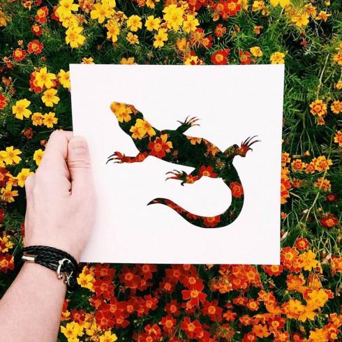 Nikolai-Tolsty-animal-silhouettes-6