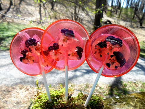 Funny-Lollipops-made-with-Real-Flowers-6
